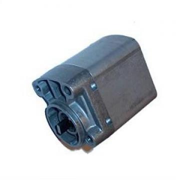 POMPE HYDRAULIQUE HALDEX FP12A1 1710005 / YM 6913