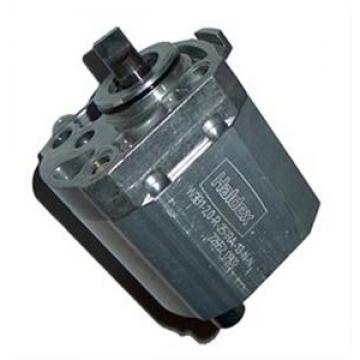 NEW ELECTRIC PUMP MOTOR HALDEX-BARNES 2200975 IM 0132 W8735 1788-AC 2578-AC