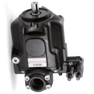 Kerr Nelson Réservoir Pompe à Carburant EFP523 Remplacement 31110-02500, FP5294, (Compatible avec: Atos)