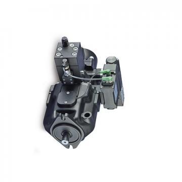 Delphi Pompe À Carburant fe0449-12b1 pour HYUNDAI ELANTRA XD i30 FD GK i10 PA i20 4 (Compatible avec: Atos)