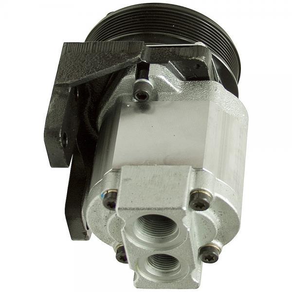Hydraulique pompe à engrenages BOSCH REXROTH 0 510 665 424 #1 image