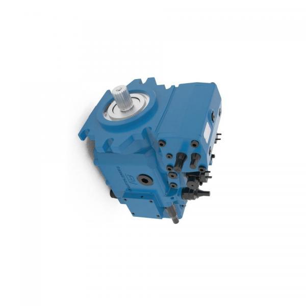 BOSCH REXROTH hydraulic axial piston fixed pump A17FO063/10NLWK0E81-0 R902162394 #1 image