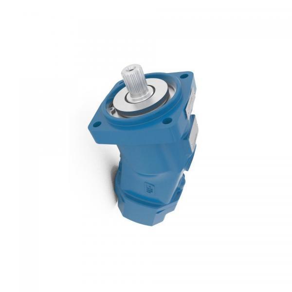 BOSCH REXROTH hydraulic axial piston fixed pump A17FO063/10NLWK0E81-0 R902162394 #3 image