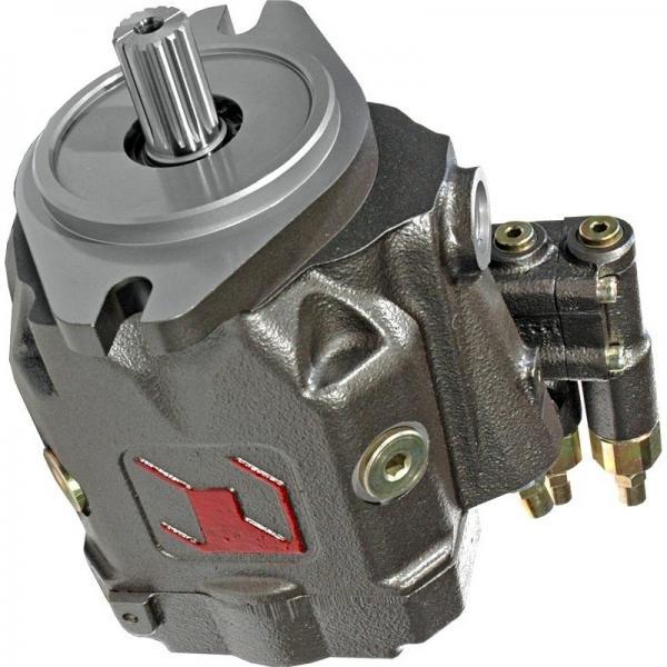 BOSCH REXROTH hydraulic axial piston fixed pump A17FO063/10NLWK0E81-0 R902162394 #2 image